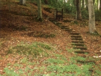 Another view of the steps cut into the hillside at Wall Road, in the Gilford Castle estate where the Staffordshire Regiments were billeted whilst in Gilford.